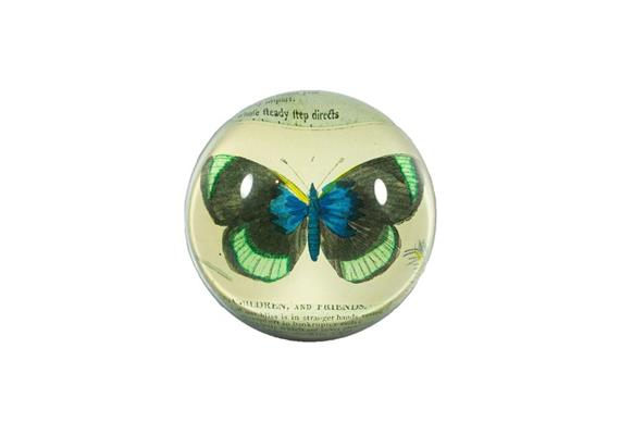 Paper Weight 2.0: Schmetterling